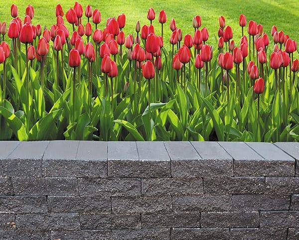 ogrodzenia gładkie 50 tralslupex